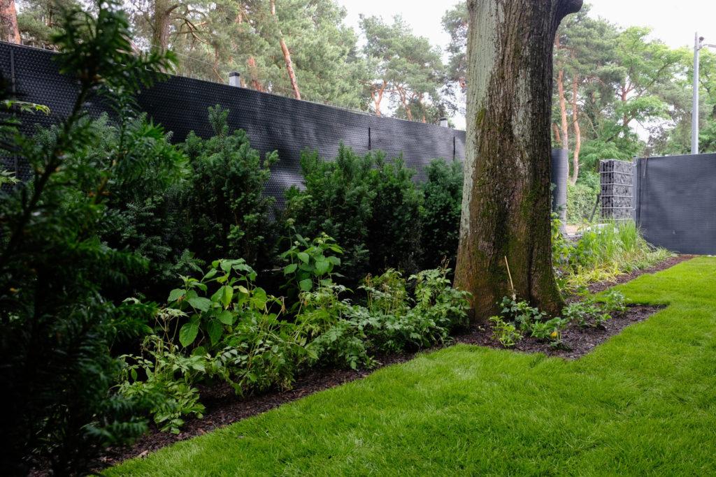 Projektowanie ogrodów Warszawa Wola